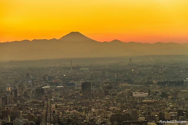 富士山 信仰の対象と芸術の源泉の画像 p1_13