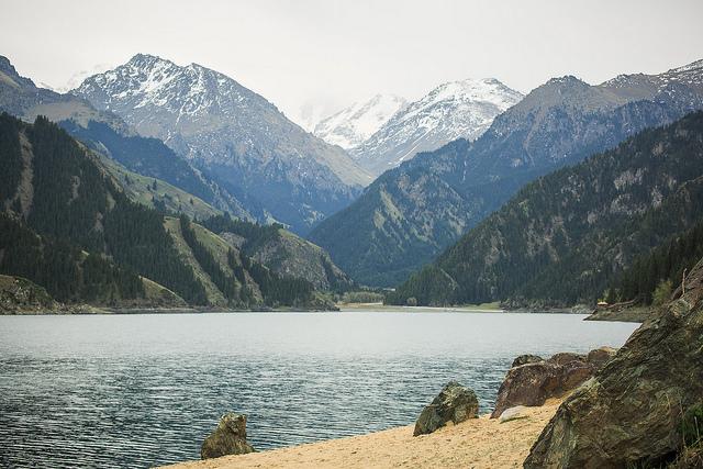 新疆天山の画像 p1_24