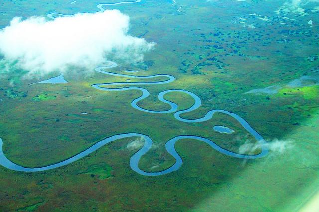 オカバンゴ・デルタの画像 p1_7