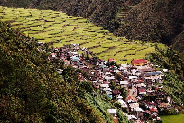 フィリピン・コルディリェーラの棚田群の画像 p1_20