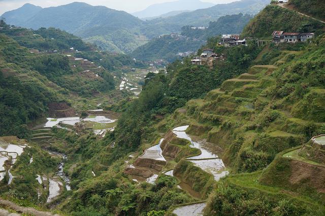 フィリピン・コルディリェーラの棚田群の画像 p1_34
