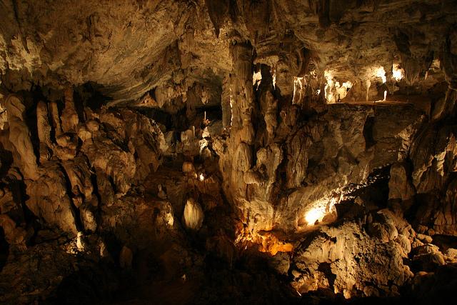 グヌン・ムル国立公園の画像 p1_5