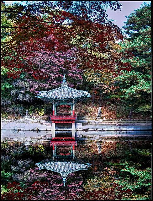 昌徳宮の画像 p1_30