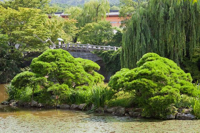 石窟庵と仏国寺の画像 p1_16