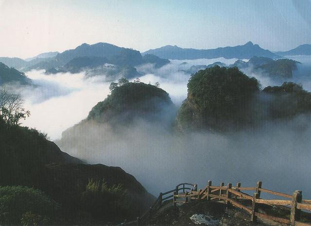 武夷山の画像 p1_14