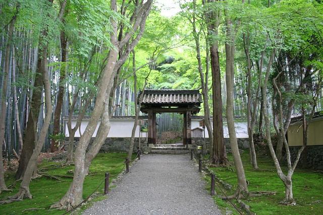 古都京都の文化財の画像 p1_22