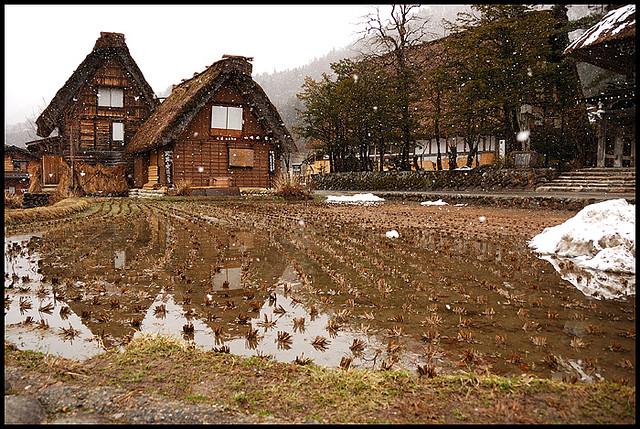 白川郷・五箇山の合掌造り集落の画像 p1_6