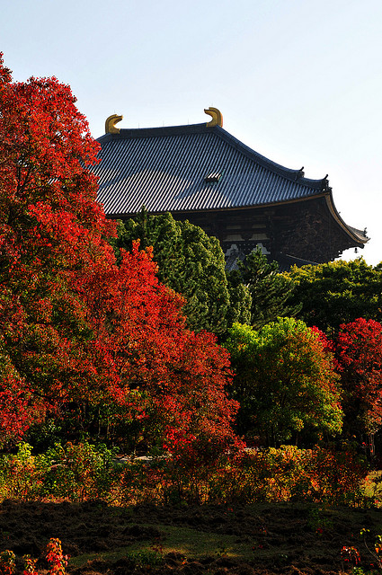 古都奈良の文化財の画像 p1_26