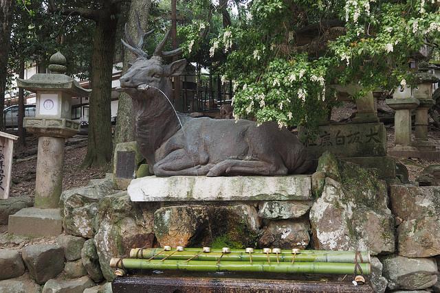 古都奈良の文化財の画像 p1_24
