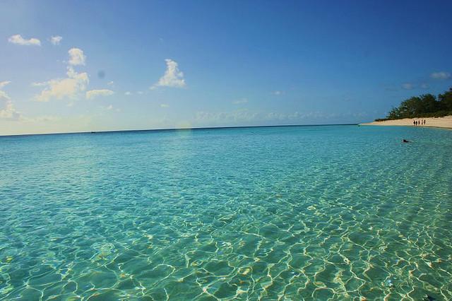 アルダブラ環礁の画像 p1_13