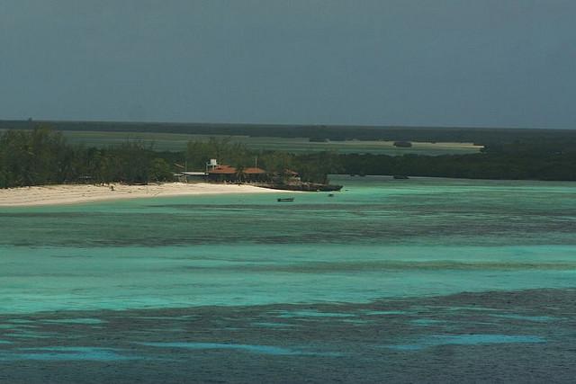 アルダブラ環礁の画像 p1_17