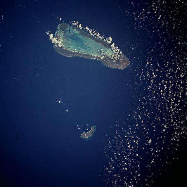 アルダブラ環礁の画像 p1_29
