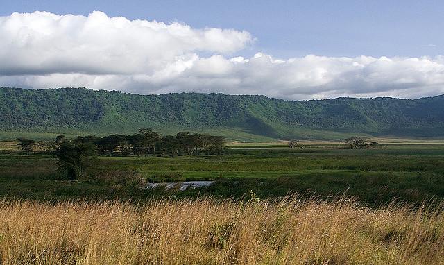 ンゴロンゴロ保全地域の画像 p1_13