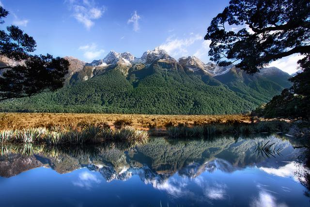 テ・ワヒポウナム 南西ニュージーランドの画像 p1_8