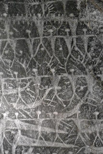 ヴァルカモニカの岩絵群の画像 p1_37