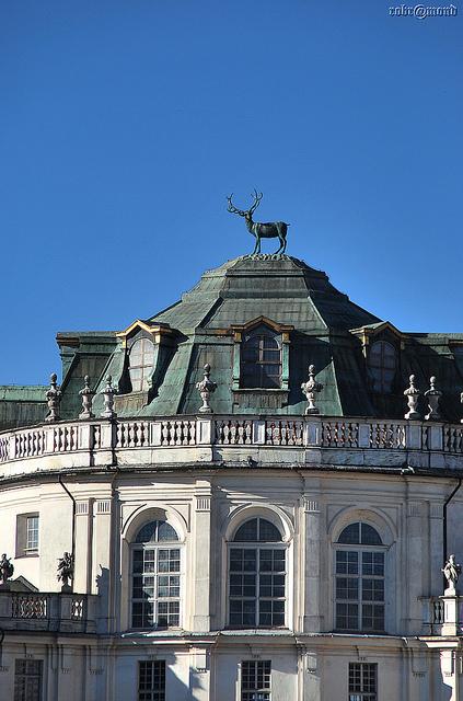 サヴォイア王家の王宮群の画像 p1_8
