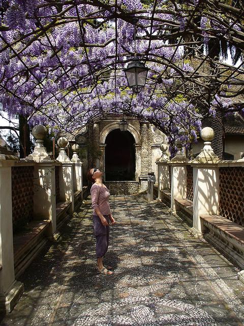 ティヴォリのエステ家別荘の画像 p1_4