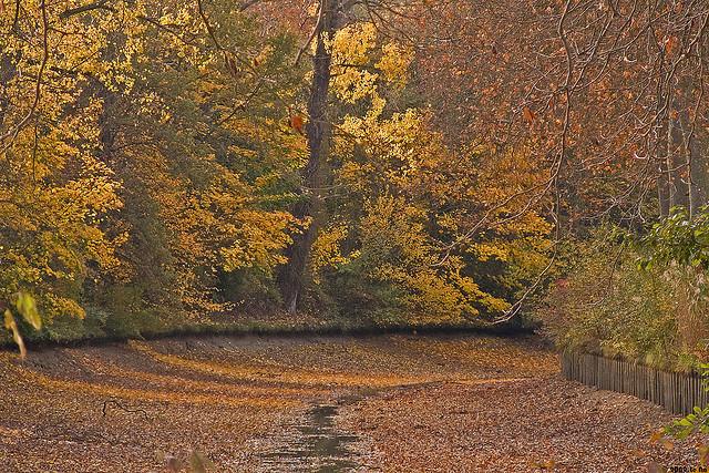 ミディ運河の画像 p1_11