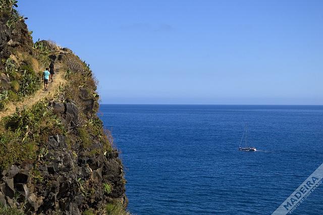 マデイラ諸島の画像 p1_29
