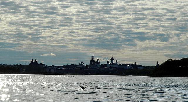 ソロヴェツキー諸島の画像 p1_10