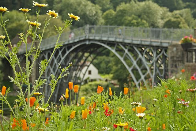 アイアンブリッジ峡谷の画像 p1_22