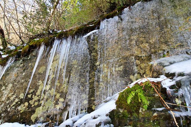 グレート・スモーキー山脈国立公園の画像 p1_18