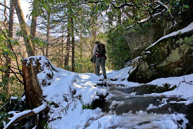 グレート・スモーキー山脈国立公園の画像 p1_26