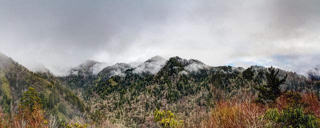グレート・スモーキー山脈国立公園の画像 p1_9