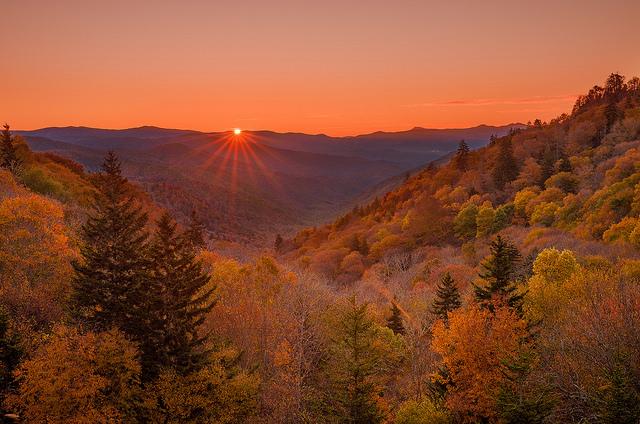 グレート・スモーキー山脈国立公園の画像 p1_8