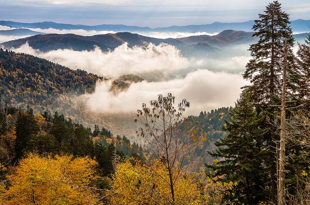 グレート・スモーキー山脈国立公園の画像 p1_6
