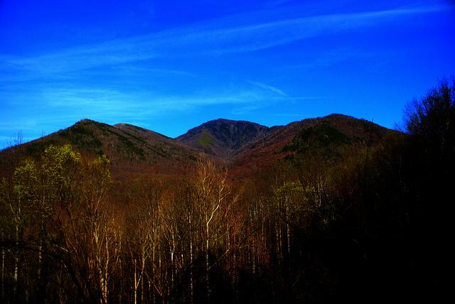 グレート・スモーキー山脈国立公園の画像 p1_5
