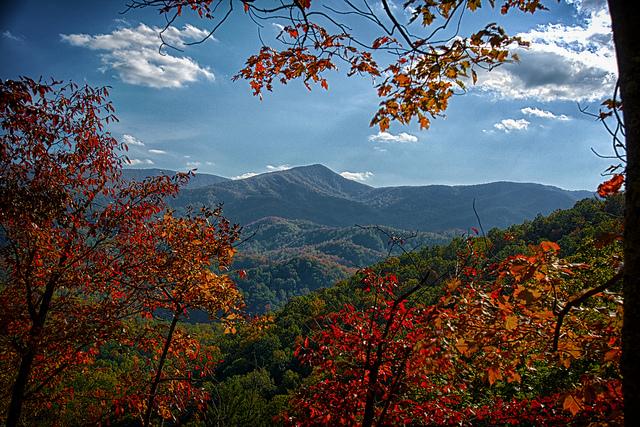 グレート・スモーキー山脈国立公園の画像 p1_19