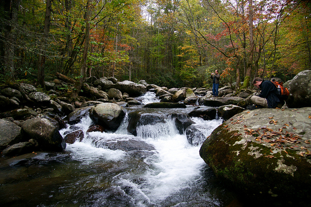 グレート・スモーキー山脈国立公園の画像 p1_12