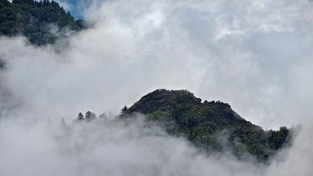 グレート・スモーキー山脈国立公園の画像 p1_13