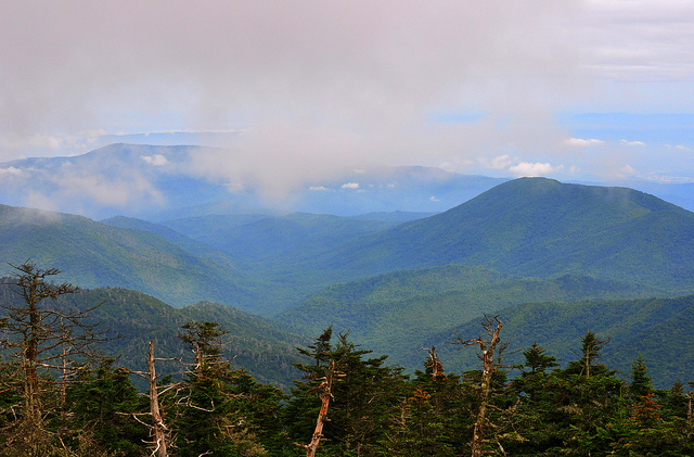 グレート・スモーキー山脈国立公園の画像 p1_14