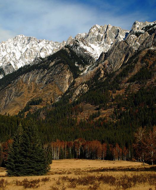 カナディアン・ロッキー山脈自然公園群の画像 p1_40