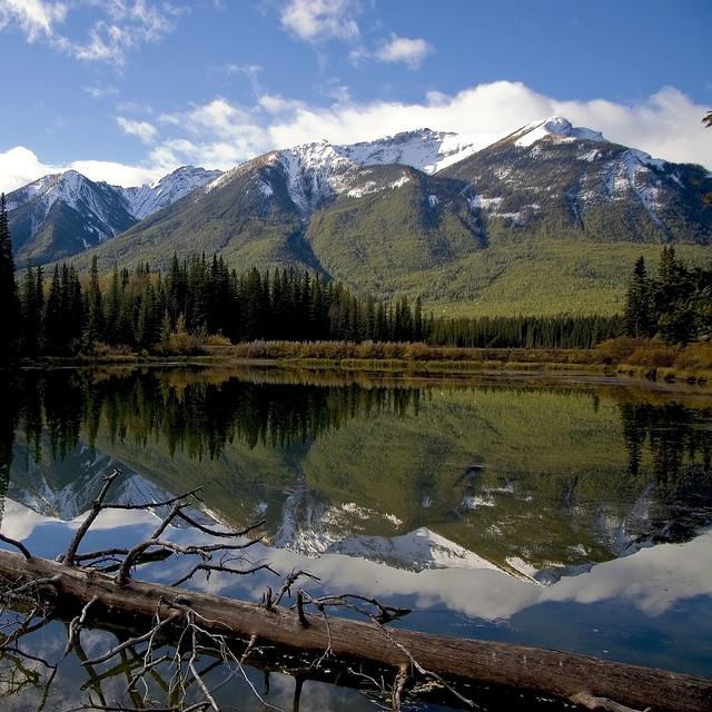 カナディアン・ロッキー山脈自然公園群の画像 p1_39