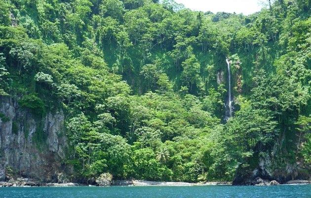 ココ島の画像 p1_5