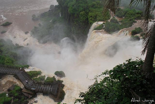 イグアス国立公園 (アルゼンチン)の画像 p1_18