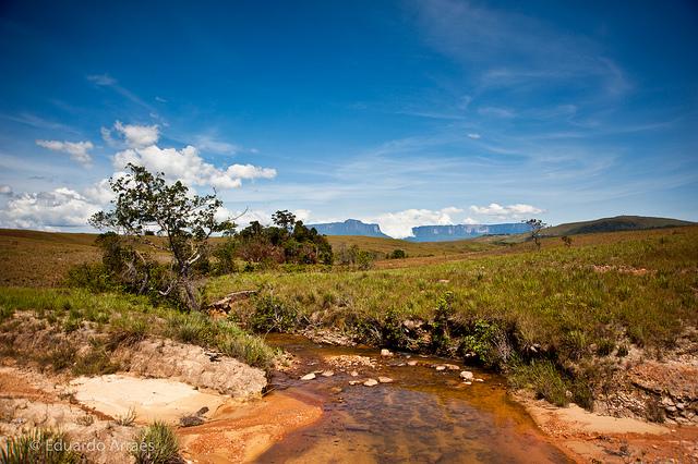 カナイマ国立公園の画像 p1_22
