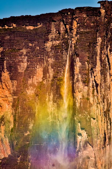 カナイマ国立公園の画像 p1_38