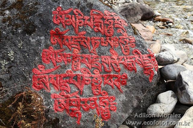 サガルマータ国立公園の画像 p1_17