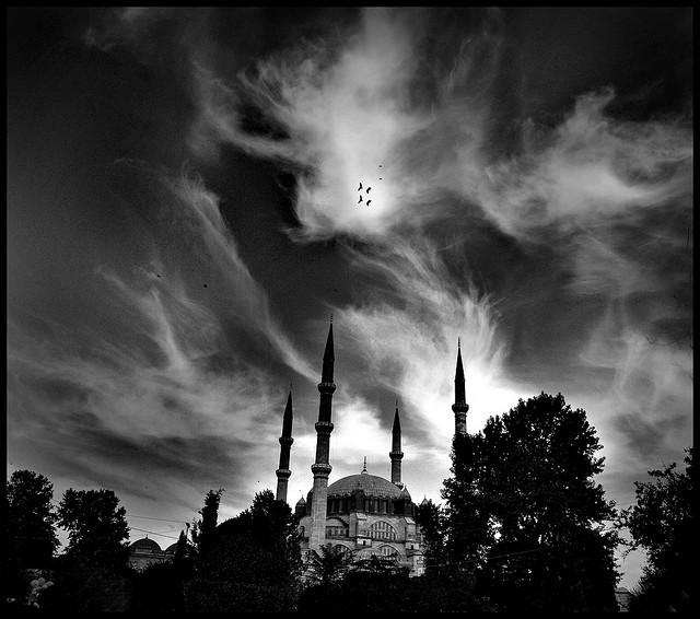 セリミエ・モスクの画像 p1_12